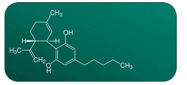 GW Pharma - Cannabidiolo (EPIDYOLEX) immagine